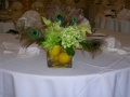 06551_august_and_sept_09_weddings_081